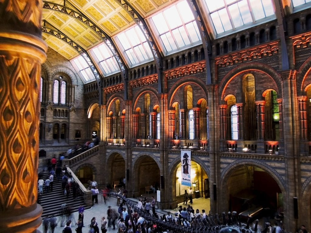 5 Best World's Museums of Natural History